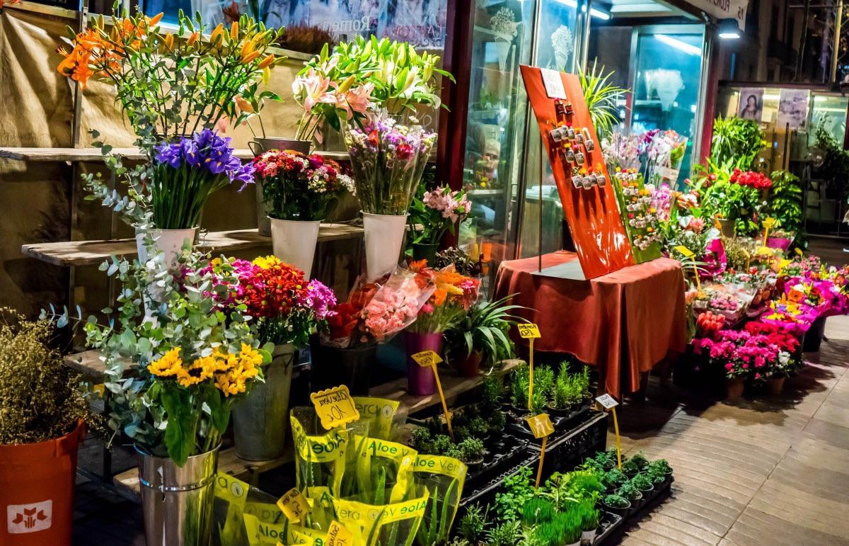 Магазин цветов, название цветов в цветочном магазине с картинками